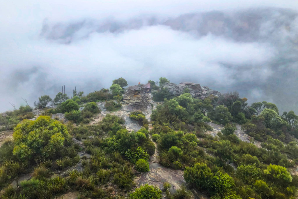Walls Lookout in the mist, Blue Mountains